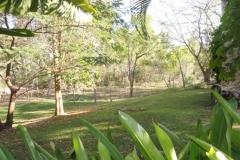 Homestead Lawn 3